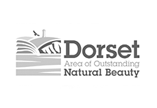 Dorset AOB